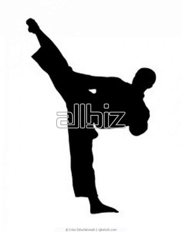 Заказать Занятия каратэ