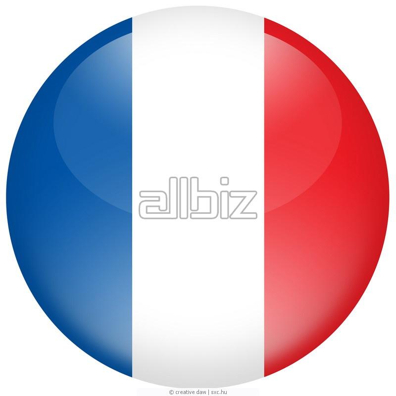 Заказать Курсы французского языка для детей