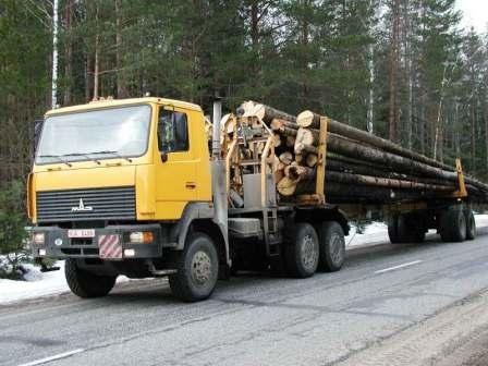 Заказать Хлыстовая лесозаготовка