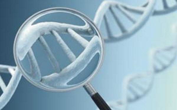Картинки по запросу Преимплантационная генетическая диагностика