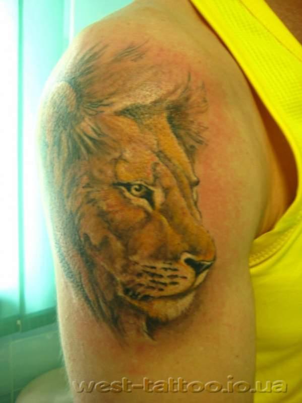 Заказать Реставрация татуировок