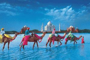 Заказать Тур в Индию