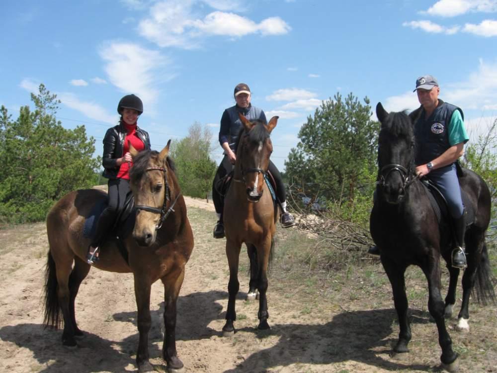 Заказать Конные прогулки, Конные прогулки Киев