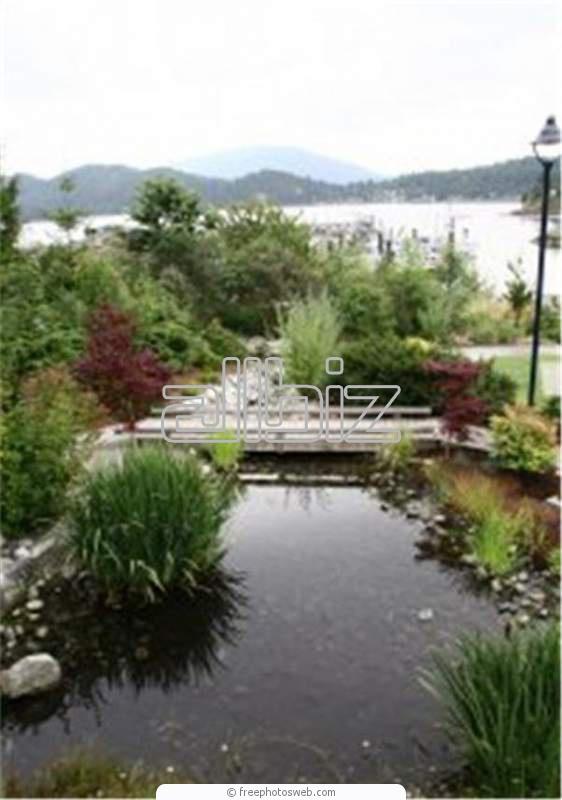 Заказать Ландшафтный дизайн сада.