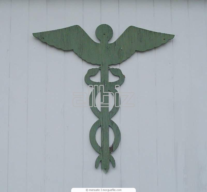 Заказать Медецинское страхование