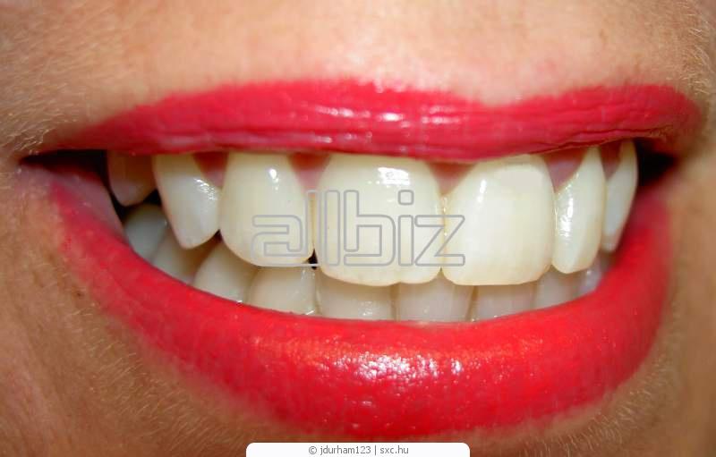 Заказать Стоматологические услуги