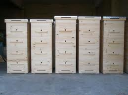 Заказать Пчелопакеты, пчелы из Львовской области