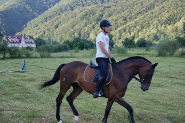 Заказать Катание на лошадях