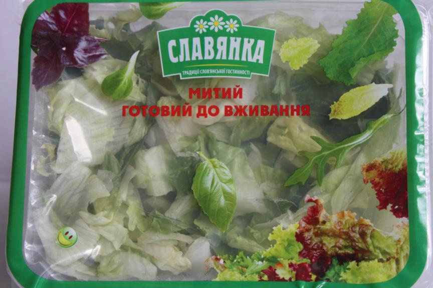 Заказать Салат Айсберг, салат Радичио, салат Ромен, салат Фризе, салат Премиум, салат Неаполитанский, салат Греческий