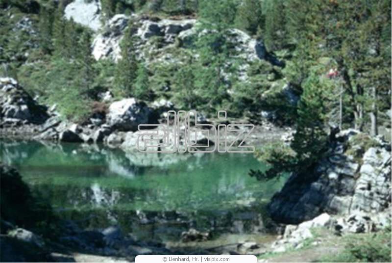 Заказать Активный отдых на воде. Отдых на природе. Индивидуальные домики с удобствами. охота, рыбалка, грибы, ягоды.