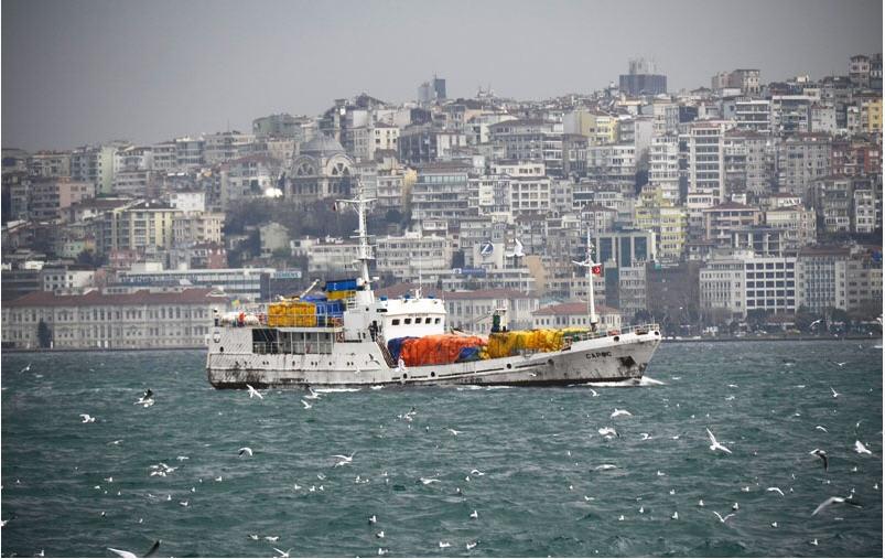 Заказать Организация экспортных операций (г.Евпатория - г.Стамбул).