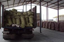 Заказать Доставка картофеля по всей Украине