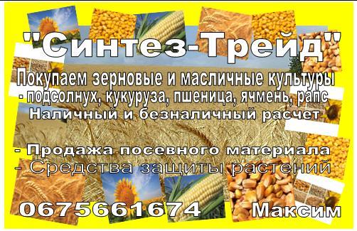 Заказать Закупаем зерновые и масличные культуры