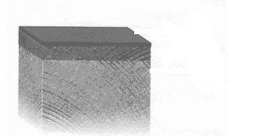 Order Fireproof processing of DSA-1, DSA-2 wood