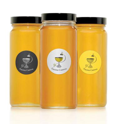Заказать Мёд - продукт пчеловодства, который широко применяется для профилактики и лечения сложнейших заболеваний во всем мире