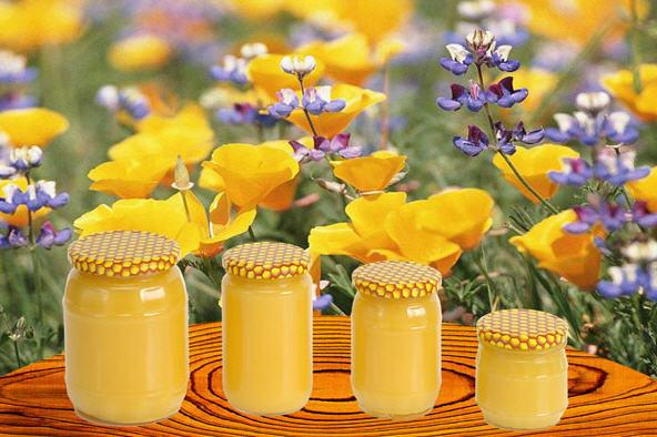 Заказать Цветочная пыльца - это сочетание разнообразных витаминов, гормонов и более 50 биологически активных веществ