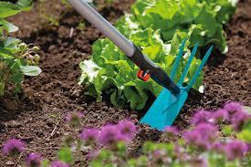 Заказать Обработка почвы