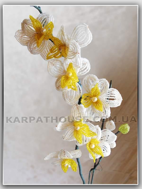 Заказать Орхидея из бисера