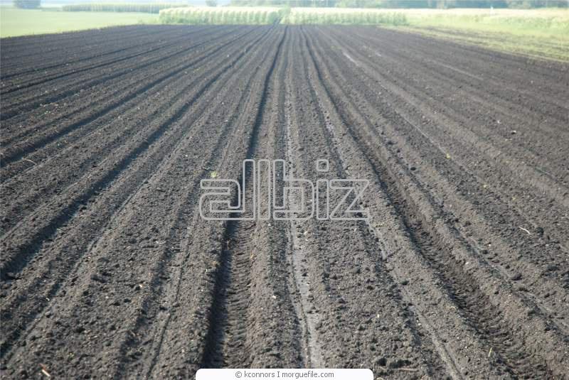 Заказать Обработка почвы вспашка, культивация, боронование, посев)