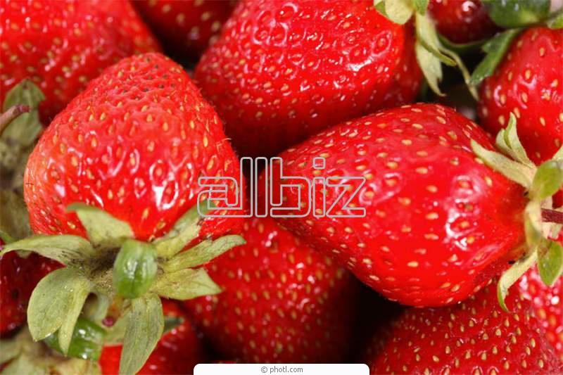 Заказать Выращивание овощей, фруктов, ягод