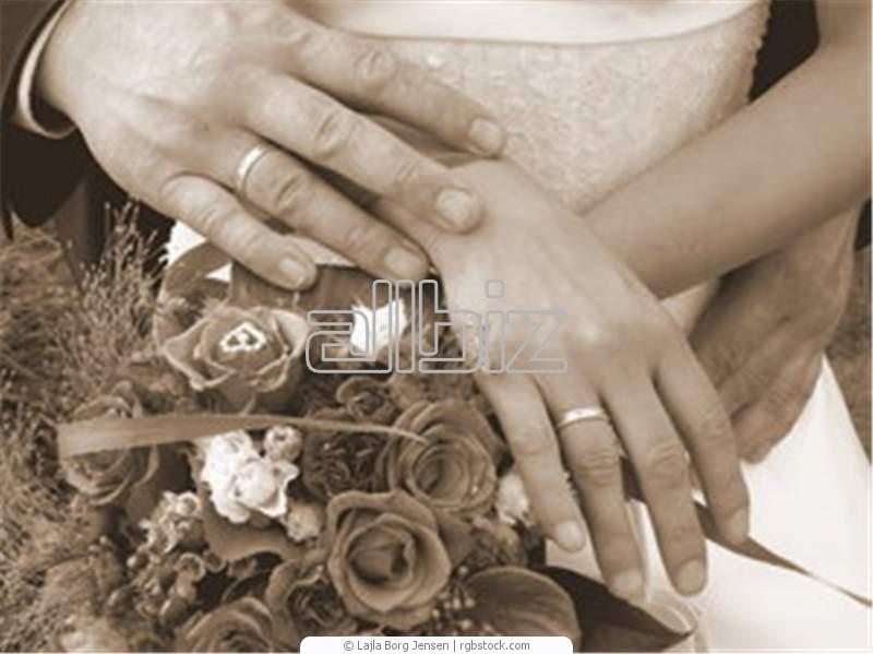 Заказать Свадебные фотографии