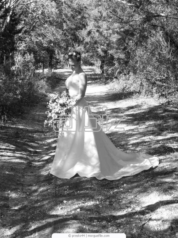 Заказать Свадебный фотограф Луганск