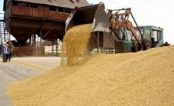 Заказать Отгрузка с железнодорожного транспорта зерновых культур