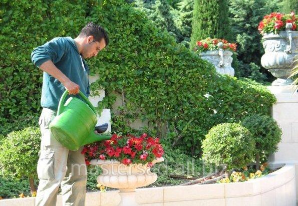 Заказать Услуги садовника
