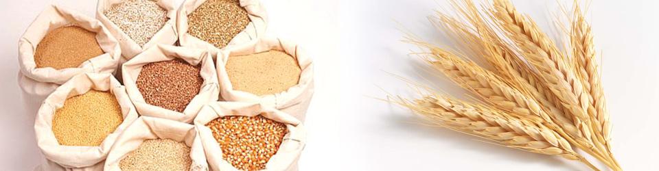 Заказать Производство продуктов мукомольной промышленности, Заготовка, переработка и реализация зерновых