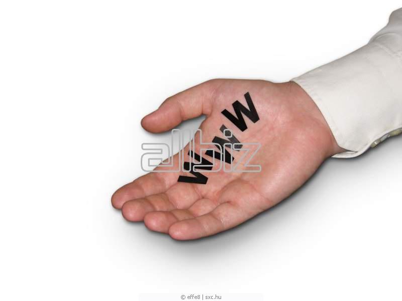 Заказать Создание индивидуального сайта