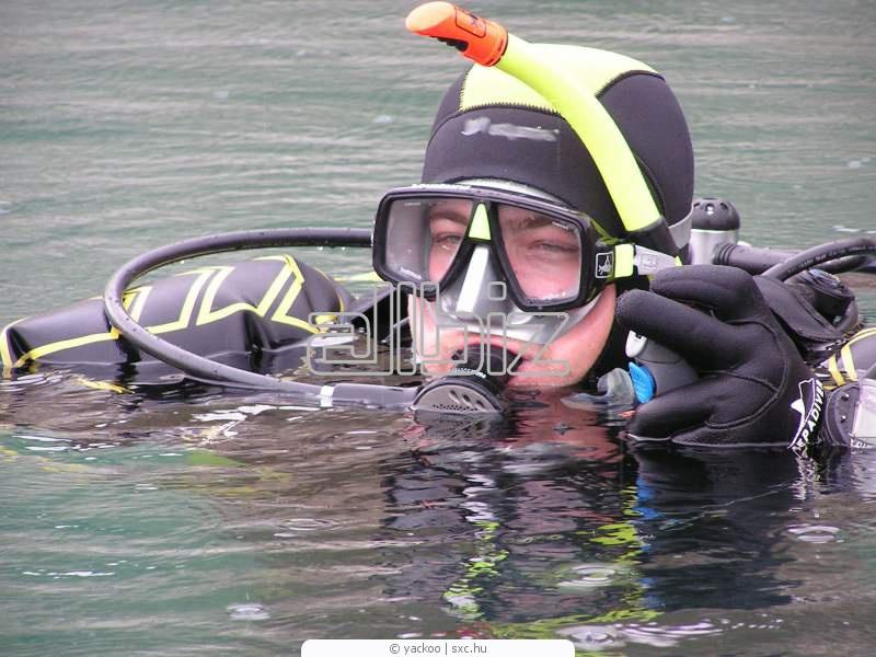 Заказать Обучение навыкам подводного плавания
