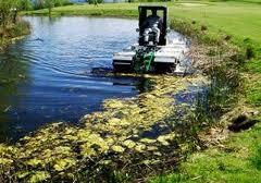 Заказать Очистка водоемов, прудов, озер