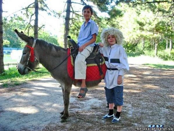 Заказать Организация праздников с участием лошадей, пони и осликов.Одесская область, Великодолинское, Большая Долина