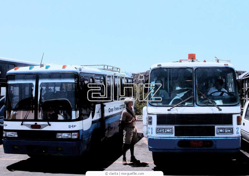 Заказать Экскурсии автобусные