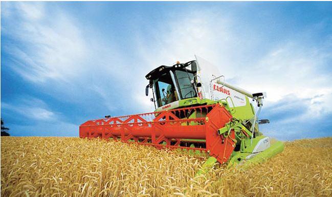 Заказать Уборка урожая зерновыми комбайнами, Ковель, Волынская область