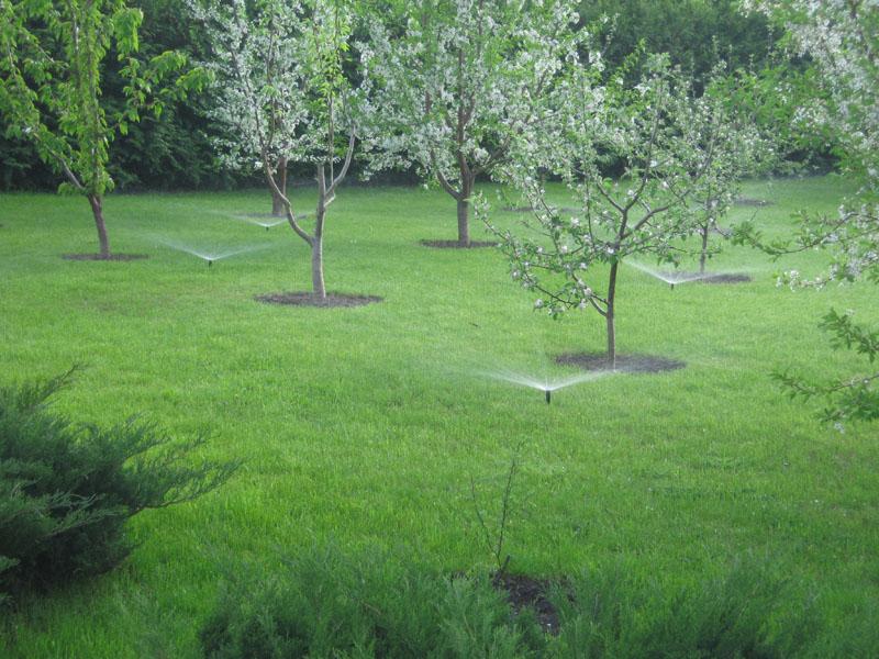 Саду полив
