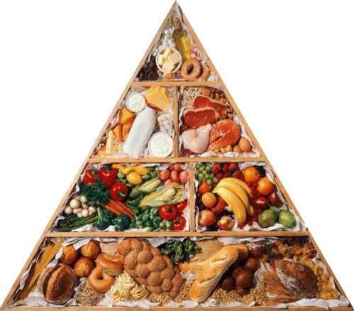 Программа похудения правильное питание