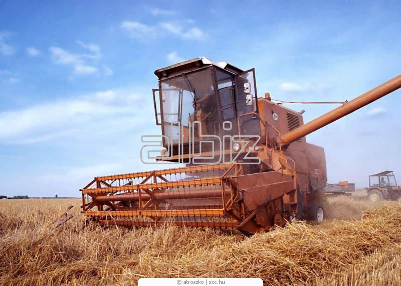 Заказать Уборка урожая зерновыми комбайнами