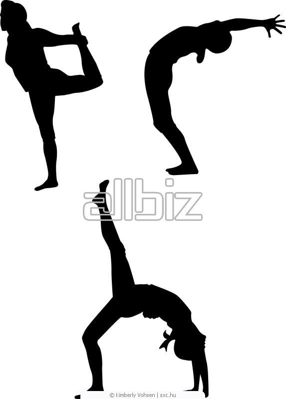 Заказать Курсы йоги
