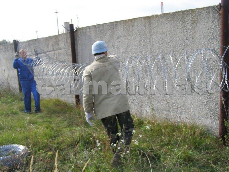 Монтаж колючей проволоки Егоза-Стандарт 600/5