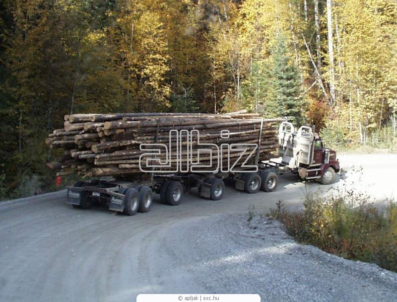 Заказать Перевезення лісовозом, ПП Гриців
