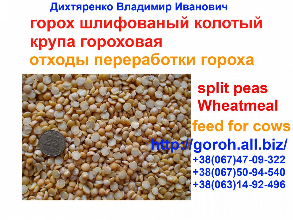 Заказать Экспорт зерновых. Подготовка документов на экспорт. Сертификат качества, экспортные документы.