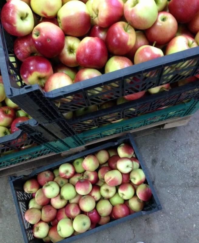 Заказать Полировка, воскование яблок