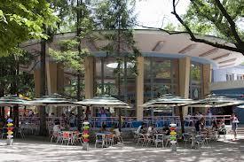 Заказать Детское кафе в парке Луцк,площадка,атракционы