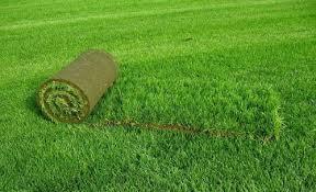 Заказать Устройство рулонного газона