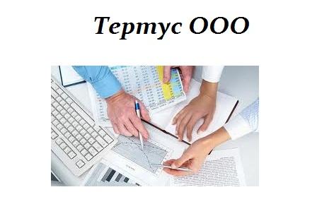 Заказать Ведение бухгалтерского и налогового учета