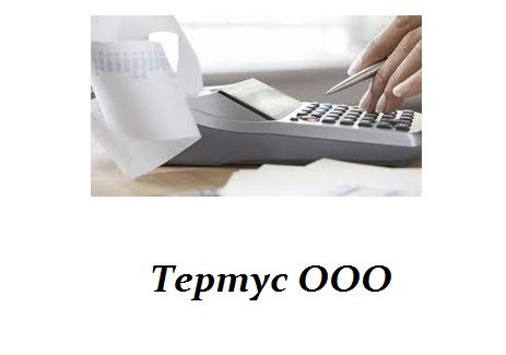 Order The analysis of conducting accounting and tax accounting at the enterprise, consultation on optimization.