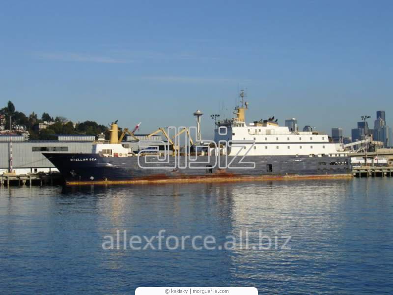 Заказать Импорт в Украину, Экспорт с Украины в Европу-Расстаможка груза в порту Измаил. Весь комплекс таможенно-брокерских услуг от ассоциированного члена АМЭУ