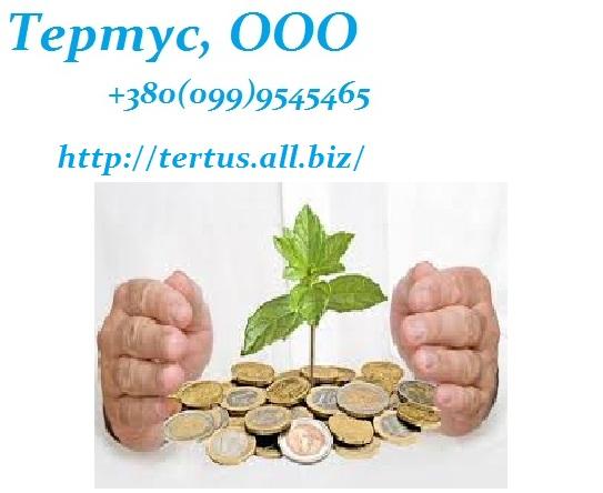 Заказать Продам ООО, оформление 1 день