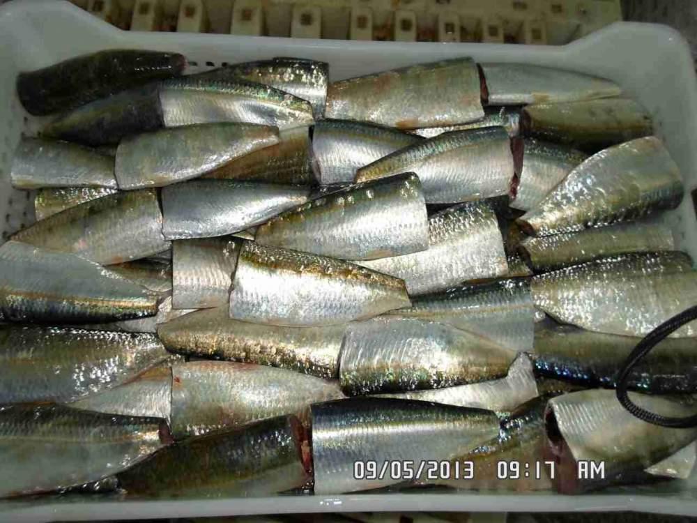 Заказать Консервный завод возьмет рыбу на переработку